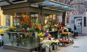 Бізнес-план магазину квітів